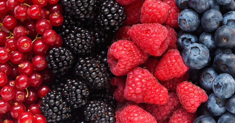 4 Health Benefits of Berries