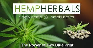 500 mg Hemp Herbals by HB Naturals