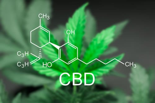Discover What Is CBD Oil Good For From HB Naturals
