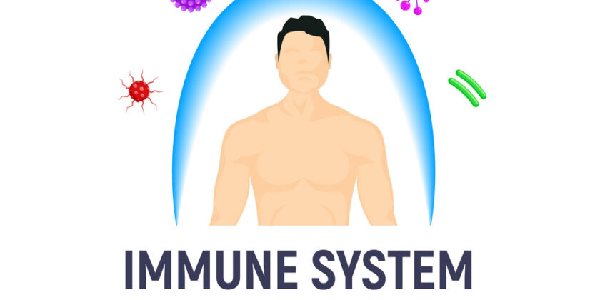 How To Make Your Immune System Strong Using HB Naturals Organic Products
